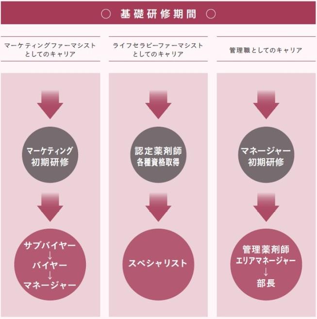 研修制度画像.jpg